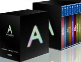Annapurna Interactive Ultimate PS4 Collection (PS4)