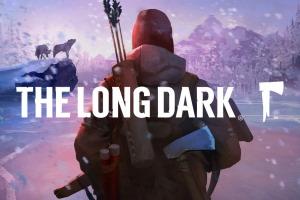 The Long Dark (PC, Mac)